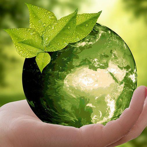 Nachhaltigkeit und umweltbewusste Produktion stehen bei uns an erster Stelle.